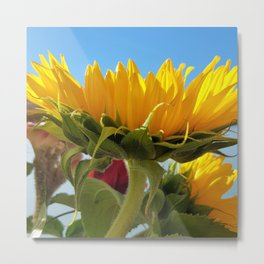 A Summer Bouquet 17 - sunflowers, roses and cockscomb Metal Print