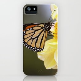 Longwood Gardens Autumn Series 406 iPhone Case