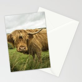 Hairy Coo Stationery Cards