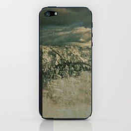 Big Bear iPhone Skin