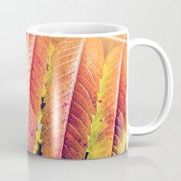 Beautiful Staghorn Sumac bush plant colorful leaves in autumn season Coffee Mug
