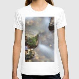 In the mood of zen iii T-shirt