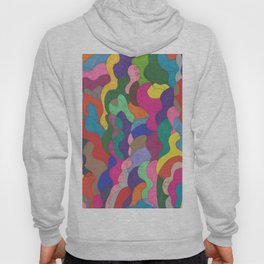 Chaos in Color Hoody