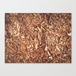 Sawdust background texture Canvas Print