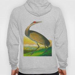 Hooping Crane John James Audubon Birds Of America Scientific Illustration Hoody