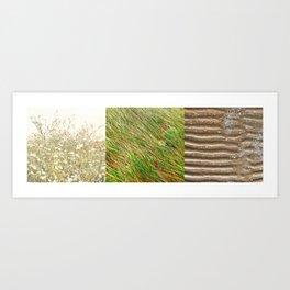 Summer Triptych Flowers Grass Sand Art Print
