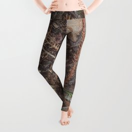 Live a Wild Life Leggings