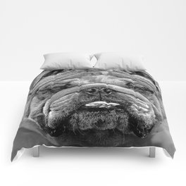 Bulldog Black and White Comforters