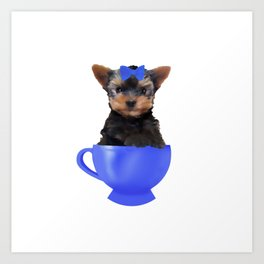 Teacup Yorkie Art Print