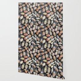 Acorns with Holes No.2 Wallpaper