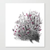 hedgehog Canvas Prints featuring Hedgehog by Linette No