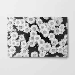 The Daisy Garden (Black and White) Metal Print