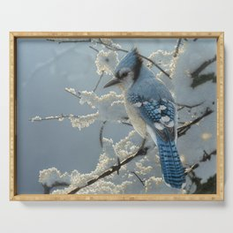 Blue Jay - On the Fence Serving Tray