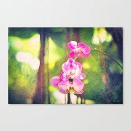 Orchid Impressions Canvas Print