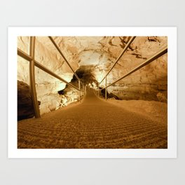 Mammoth Cave National Park Art Print