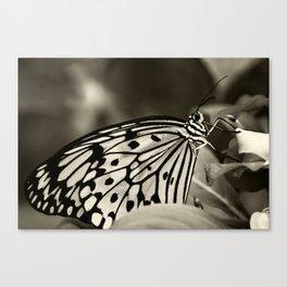 Butterfly ~ La robe du soir ~ evening dress ~ Canvas Print