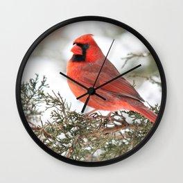 Regal Cardinal Wall Clock