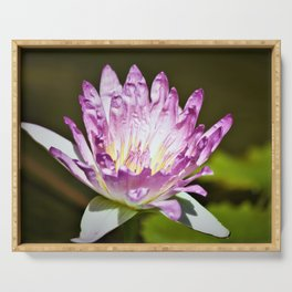 Pretty Waterlily - Reay of Light Photography Serving Tray