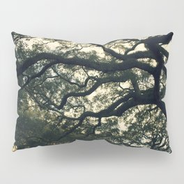 Savannah Live Oaks Pillow Sham