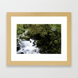 Road to Milford Sound Framed Art Print