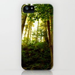 Something 'Bout The Sun Between The Trees iPhone Case