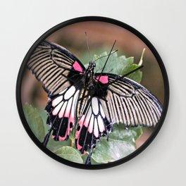 Great Mormon Butterfly Wall Clock