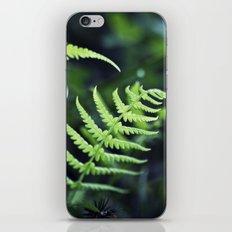 Fern Fantasy iPhone & iPod Skin