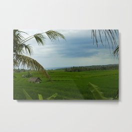Ricefields near Ubud Metal Print