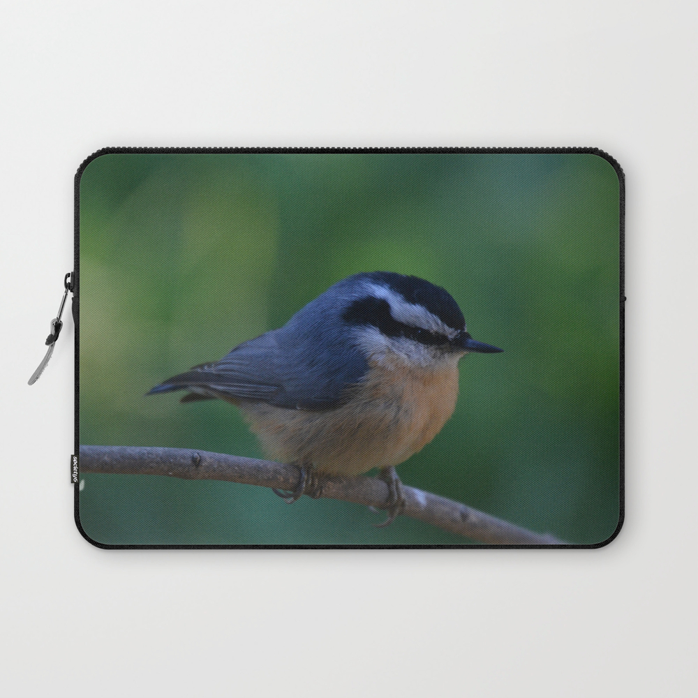A Red Breasted Nuthatch Laptop Sleeve by stuwillard (LSV671256) photo
