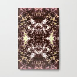 Vetruvian Metal Print