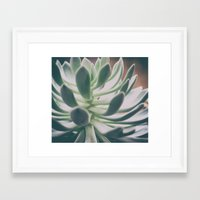 plant Framed Art Prints featuring Plant by pf_photography