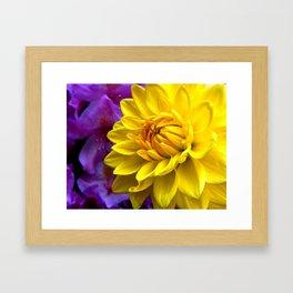 Floral Beauty #1 Framed Art Print