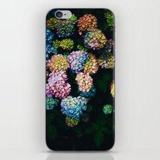 Bellissimi Fiori iPhone & iPod Skin
