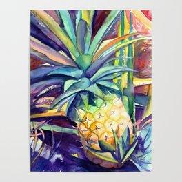 Kauai Pineapple 4 Poster