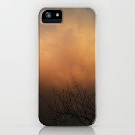 Indulged iPhone Case
