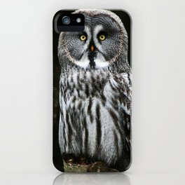 The Great Grey Owl iPhone Case