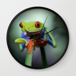 Costa Rican Tree Frog Wall Clock