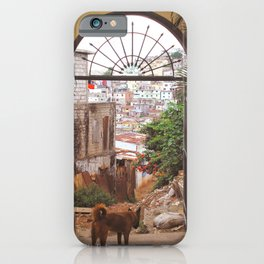 Gazing over Guayaquil iPhone Case