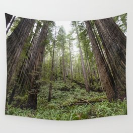 Fern Alley - Redwood Forest Nature Photography Wall Tapestry