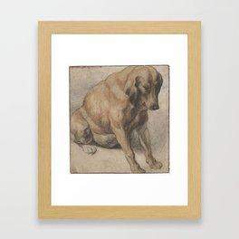 Seated Dog, Jacob Jordaens (I), 1638 Framed Art Print