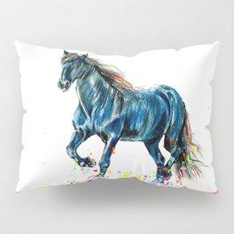 Color Run Pillow Sham