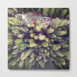Aerial Wilderness Metal Print