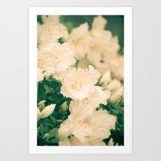 Floral Filigree Art Print