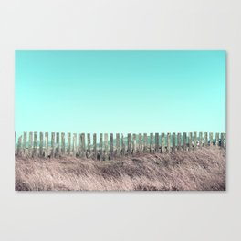 Candy fences Canvas Print