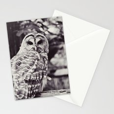 Owl Love Stationery Cards