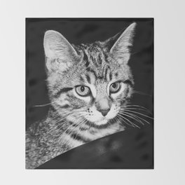 Time is what turns kittens into cats Throw Blanket