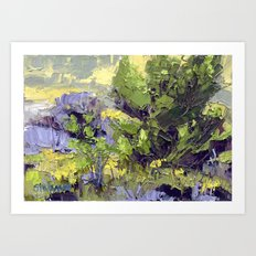 Evergreen Study Art Print
