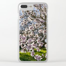 Almond trees in flower in Portugal, the Algarve Clear iPhone Case