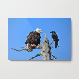 Avian Showdown Metal Print