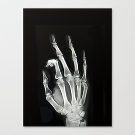 Everything is A-OK Canvas Print